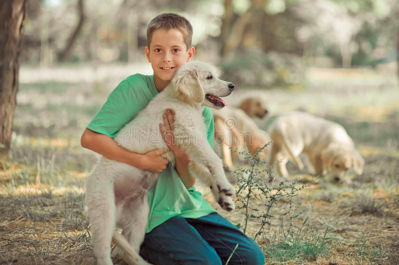 Retriever pup Lovely scene handsom teen boy enjoying summer time vacation with best friend dog ivory white labrador puppy.Happy ai. Rily careless childhood life stock photography