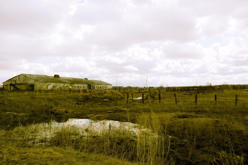 Retro öde lantgård fotografering för bildbyråer