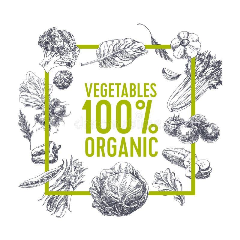Retro żywności organicznej tło royalty ilustracja