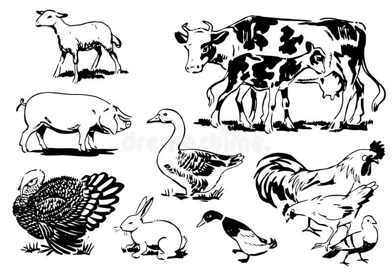 Retro animali da allevamento 02 royalty illustrazione gratis