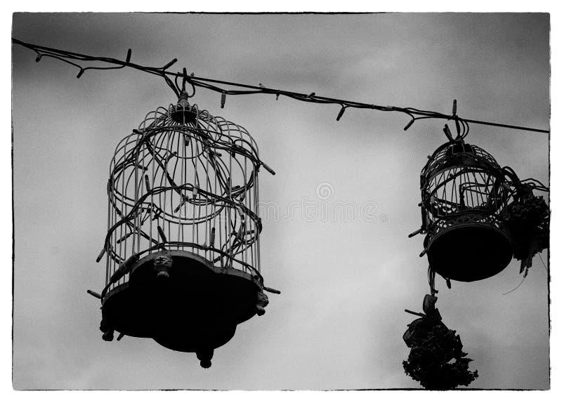 Retro birdcages stock fotografie