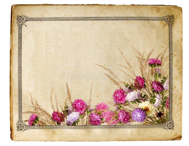 Retro blocco per grafici floreale fotografie stock
