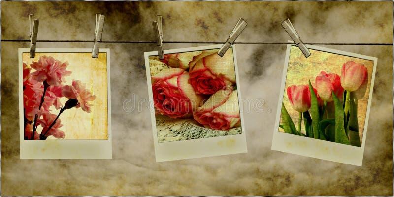 Retro- Blumen-Fotos auf Zeile stock abbildung