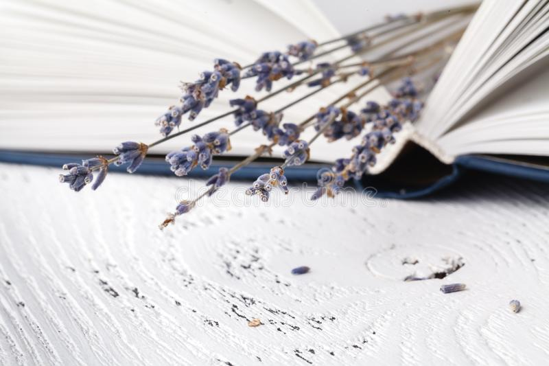 Retro bouquet of dry lavender with books royalty free stock image