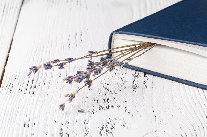 Retro bouquet of dry lavender with books royalty free stock photos
