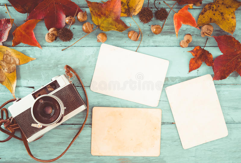 photo album leaves