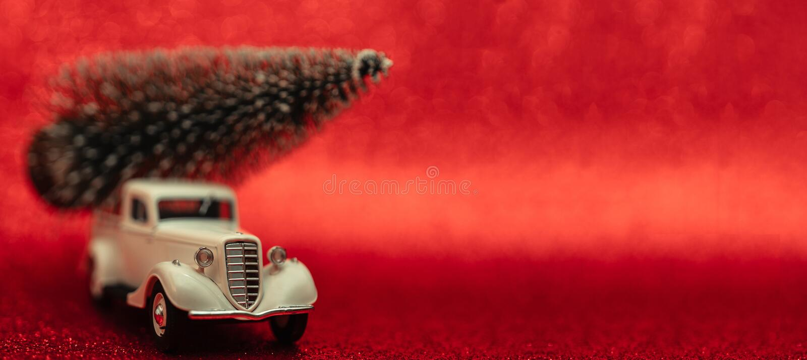 Christmas composition with toy cars and ornamental spruce. royalty free stock image