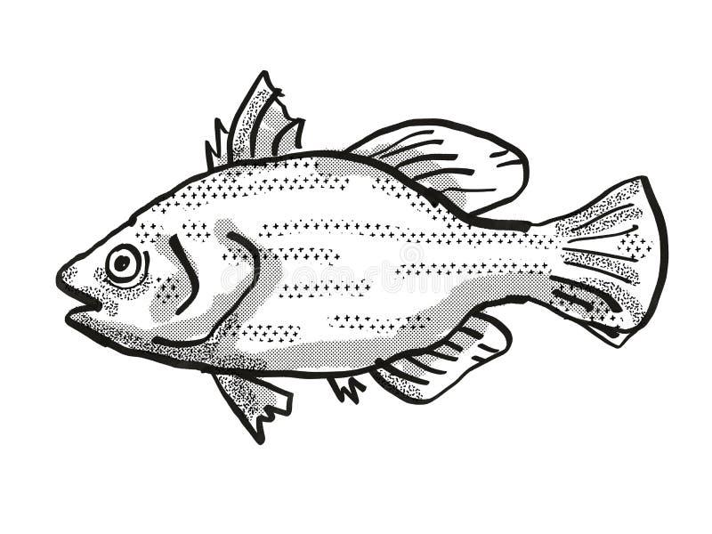 Bass Fish Cartoon Stock Illustrations 1 048 Bass Fish Cartoon Stock Illustrations Vectors Clipart Dreamstime