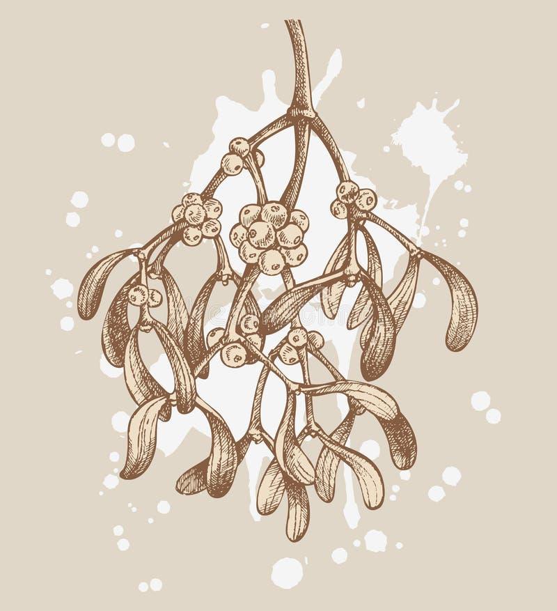 Download Retro christmas mistletoe stock vector. Image of pattern - 20906366