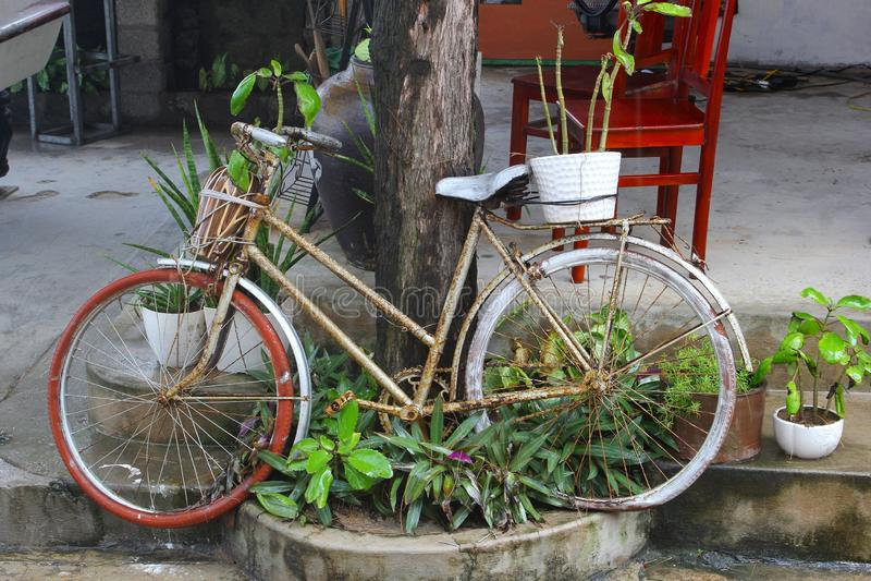 Retro de pottenstilleven van fiets groene installaties, Vietnam royalty-vrije stock foto's