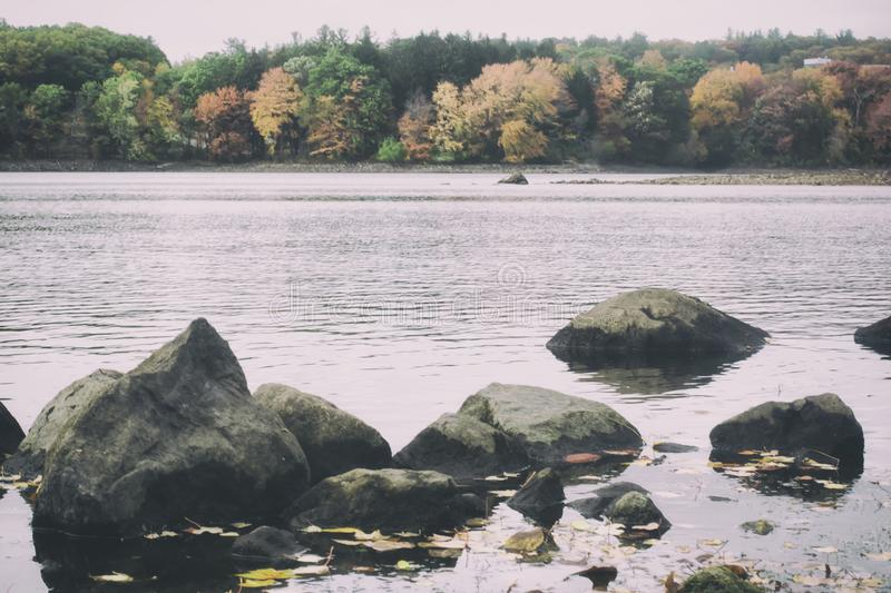 A retro film style photo of a New England lake and forest in the fall royalty free stock photos