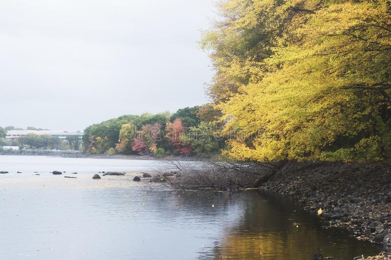A retro film style photo of a New England lake and forest in the fall.  royalty free stock photos