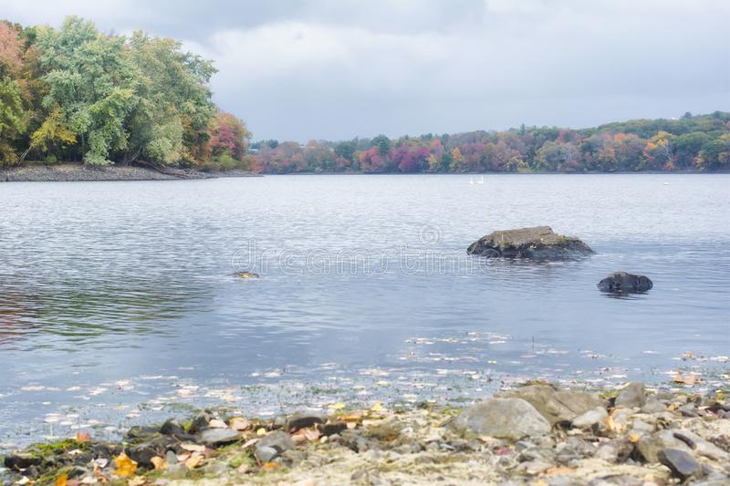 A retro film style photo of a New England lake and forest in the fall.  royalty free stock photography