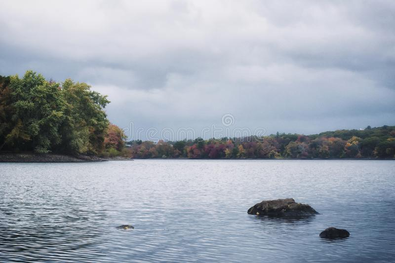 A retro film style photo of a New England lake and forest in the fall.  stock images