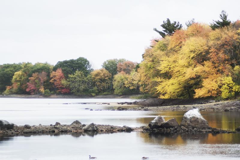 Retro filmu stylu fotografia Nowa Anglia las w spadku i jezioro zdjęcia stock