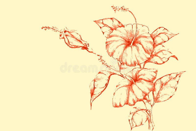 Download Retro Flower stock vector. Image of celebration, background - 23263991