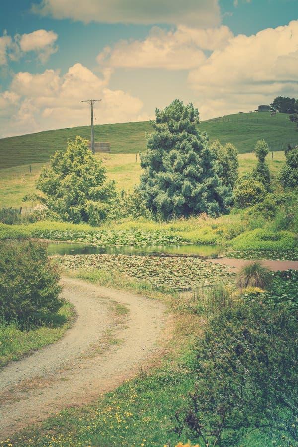 Retro foto di stile di un paesaggio rurale pastorale con la strada della ghiaia che avvolge lo stagno passato del giglio verso Ro fotografia stock libera da diritti