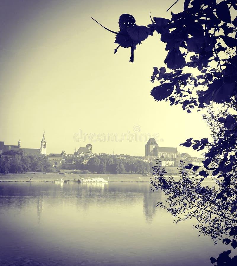 Retro fotografia miasto widok przez drzew zdjęcia stock