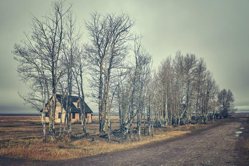Retro ha tonificato una vecchia capanna abbandonata in un giorno nebbioso fotografia stock