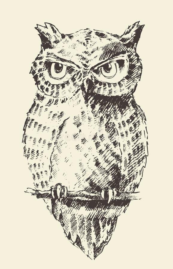 Retro hand getrokken schets van de uil de uitstekende illustratie royalty-vrije illustratie