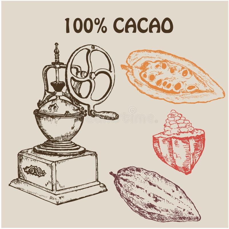 Retro handmolar för kaffe med kakaofrukter, jordkaffe och frö Hand tecknad vektorillustration Bläckpennan skissar för vektor illustrationer