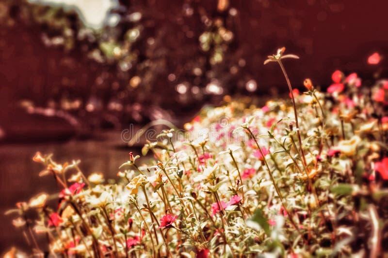 Retro- Hippie-Bild der Weinlese weniger Blume stockbilder