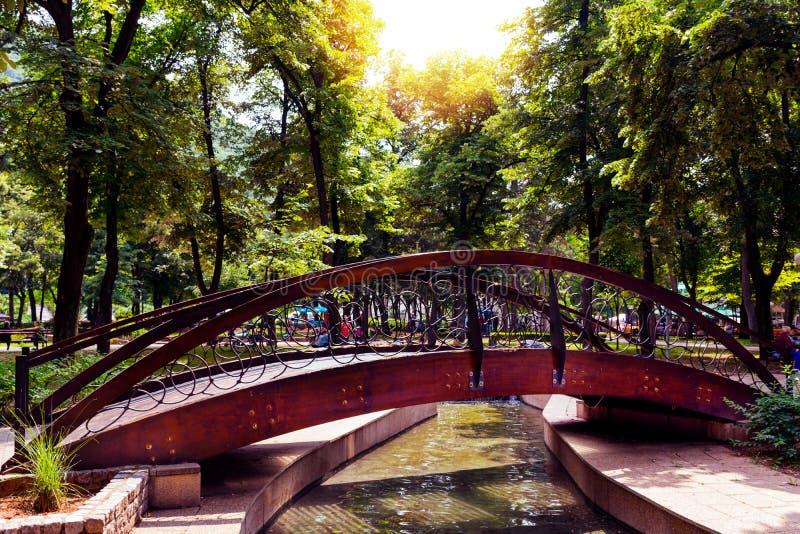 Retro- Holzbrücke im Naturpark und Erholungsort auf kleinem Fluss lizenzfreies stockbild