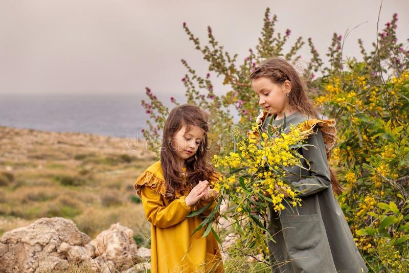 Retro- junges Mädchen gibt die Mimose der älteren Schwester auf einer grünen Hochebene nahe dem Meer in einem Sturm lizenzfreie stockbilder