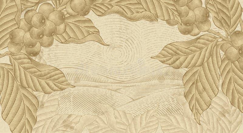 Retro- Kaffee pflanzt Hintergrund lizenzfreie abbildung