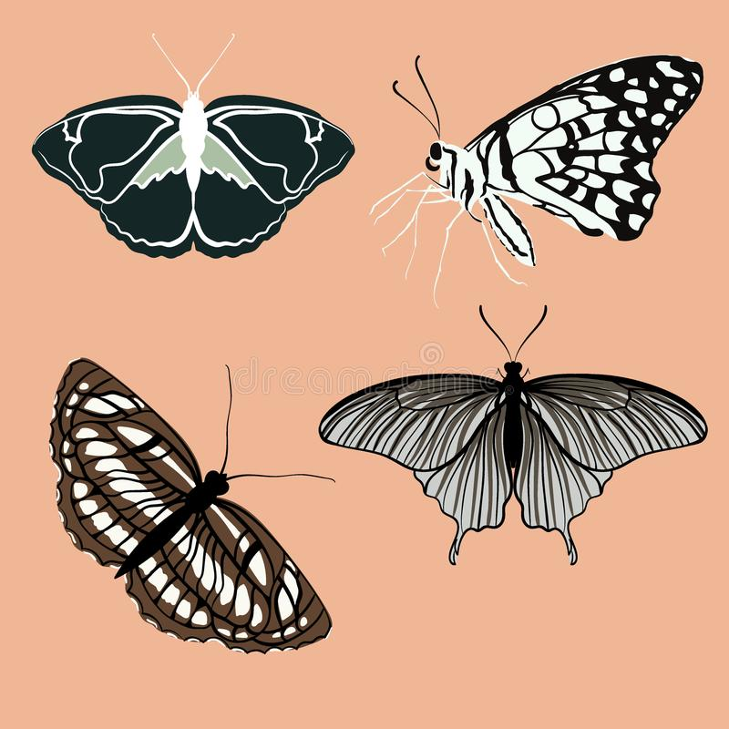 Retro kolorów motyle odizolowywający na tle Ładny wektorowy motyli ustawiający z rocznik paletą ilustracji