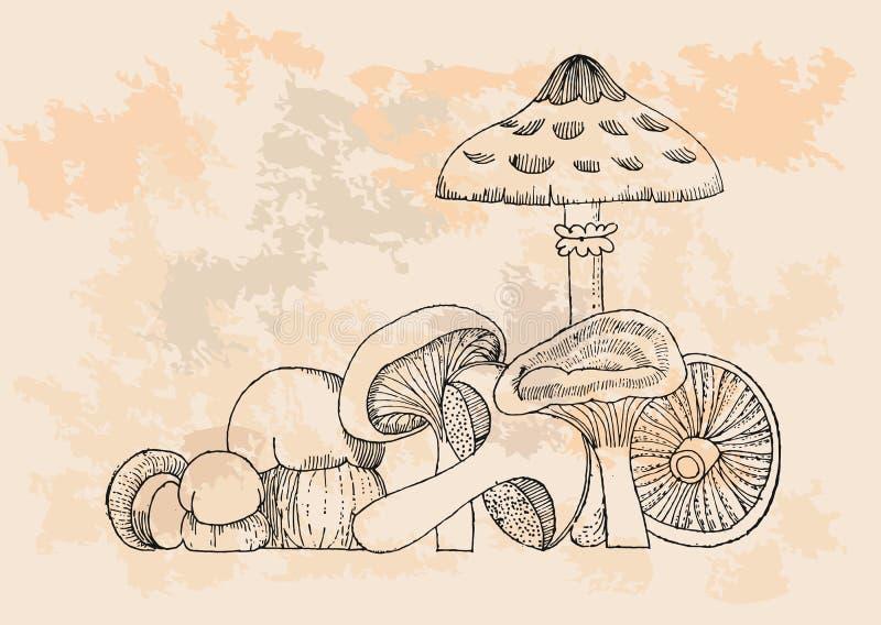 Retro Mushrooms set