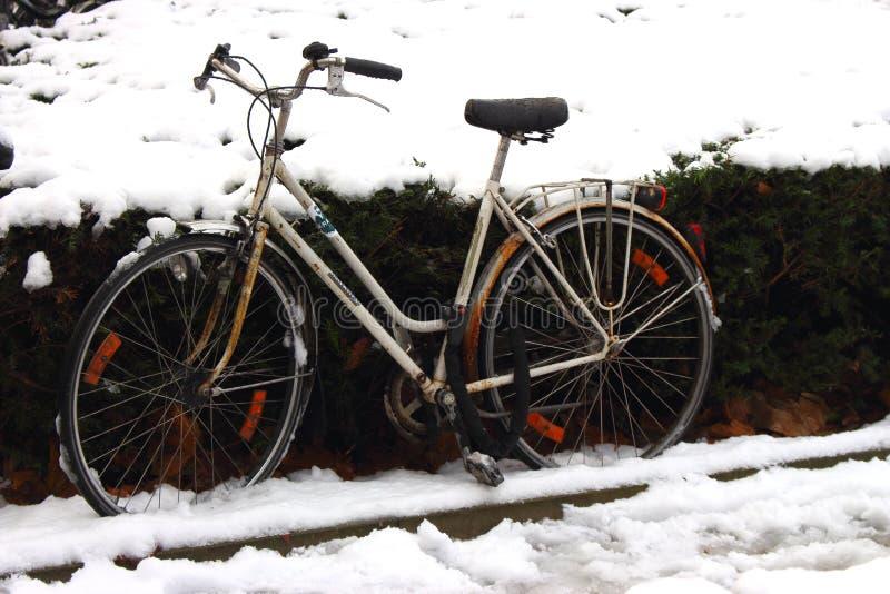 Retro ośniedziały rowerowy parking wzdłuż ulicy i krzaka pod śniegiem Zima transport rocznika rower obrazy royalty free