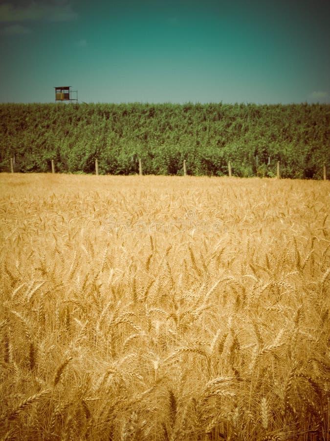Retro oogsttijd stock foto