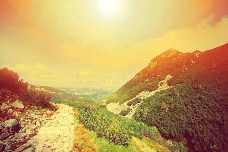 Retro paesaggio delle montagne di Colorfull fotografia stock