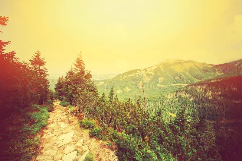 Retro paesaggio delle montagne di Colorfull immagini stock libere da diritti