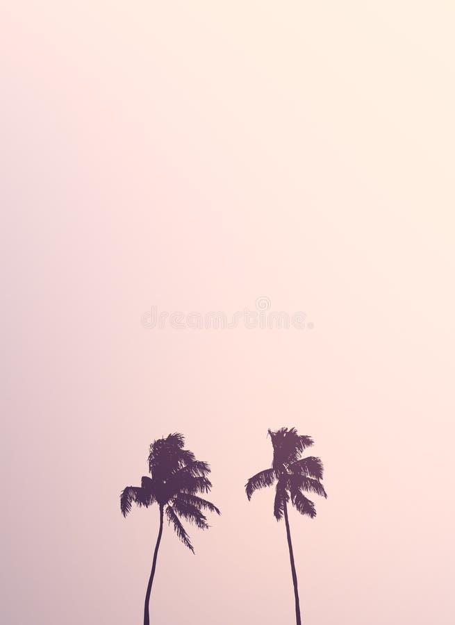 Retro- Palme-Doppelschattenbilder vektor abbildung