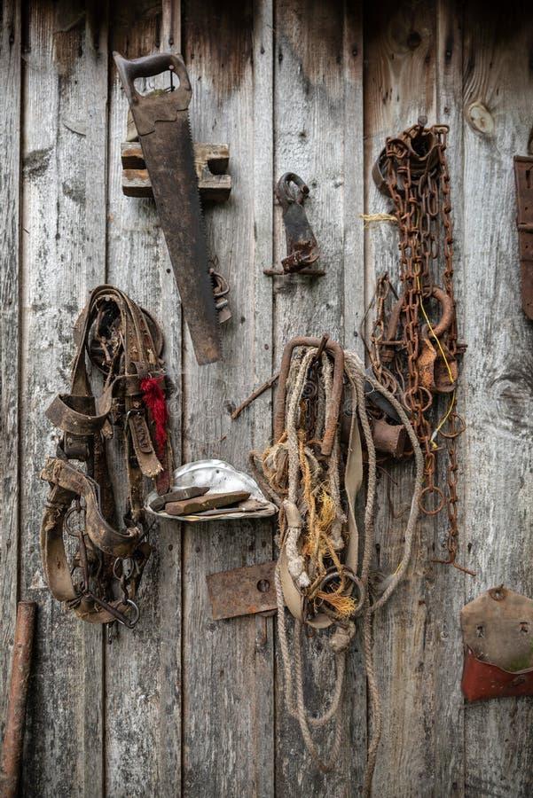 Retro- Pferdegeschirr und andere Handwerkzeuge, die an der hölzernen Wand der alten Scheune hängen stockfoto