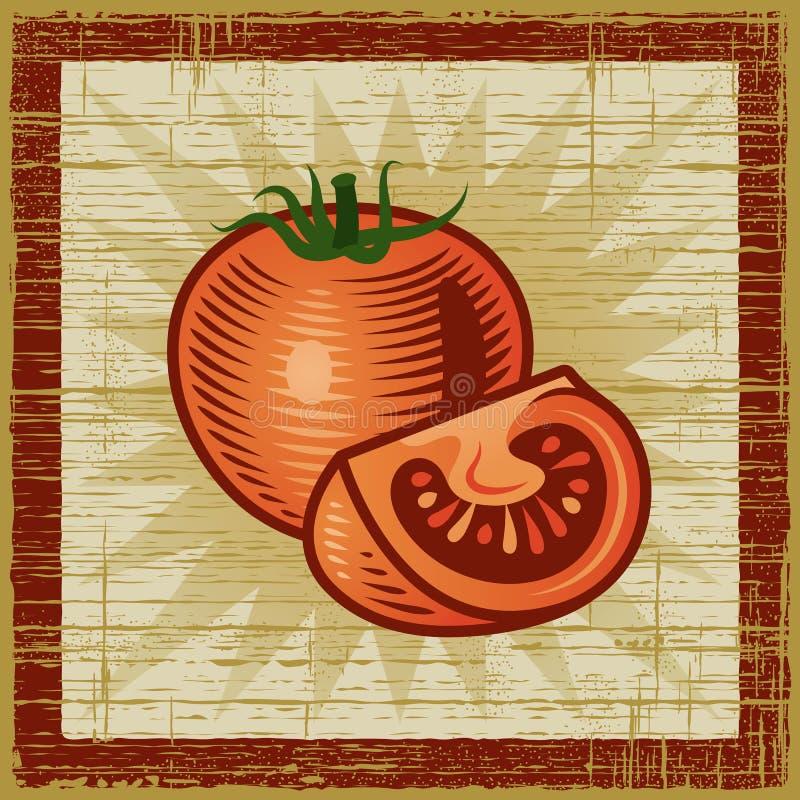 Retro pomodoro illustrazione di stock
