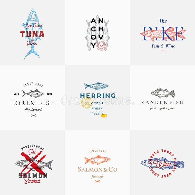 Retro segni o Logo Templates Set di vettore del pesce di qualità premio Schizzi d'annata disegnati a mano del pesce con tipografi illustrazione di stock