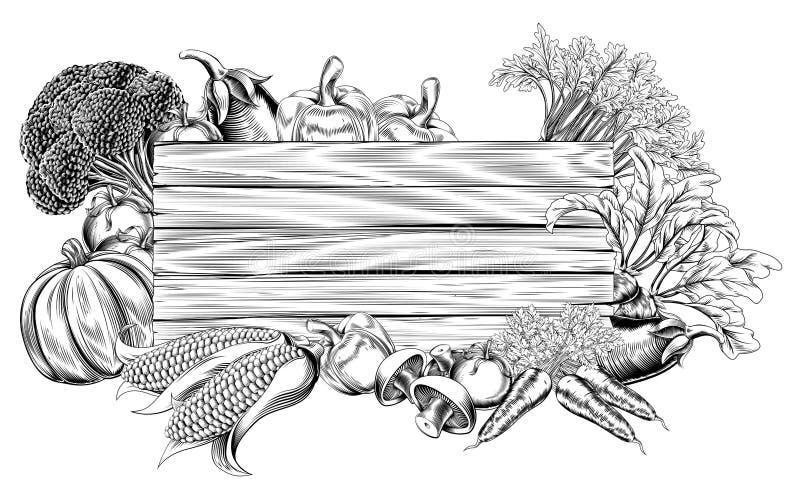 Retro segno d'annata della verdura dell'intaglio in legno illustrazione di stock
