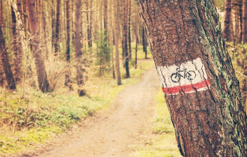 Retro segno tonificato della traccia della bici dipinto su un albero in foresta fotografie stock
