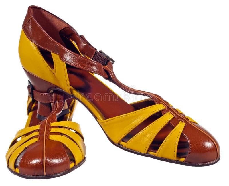 retro skor för par royaltyfri bild