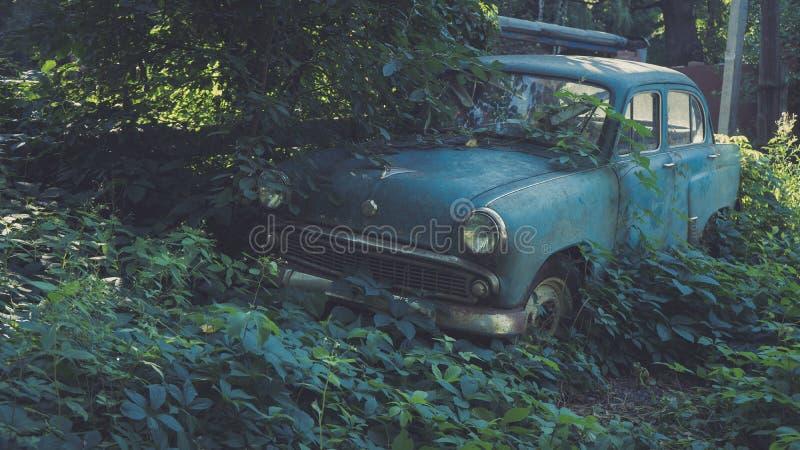 Retro- sowjetisches blaues Auto überwältigt mit Gras Oldtimer, der auf einem Landwirt ` s Gebiet verrostet lizenzfreie stockfotografie