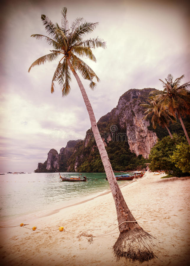 Retro- stilisierter tropischer Strand der Weinlese mit Palmen lizenzfreie stockfotografie