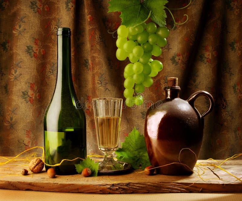 retro still wine för livstid royaltyfri bild
