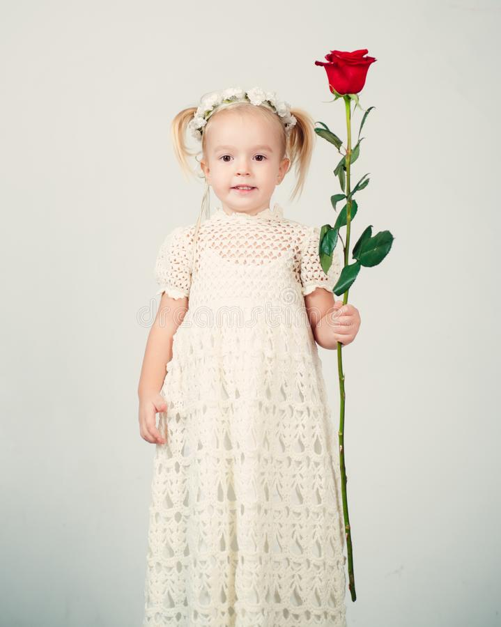 Retro style. happy birthday. wedding. small kid with red rose. happy childhood. love present. childrens day. little girl. In vintage dress. Beauty. valentines royalty free stock images