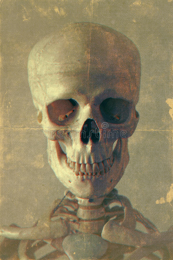 Retro Style Portrait of a Skeleton stock images