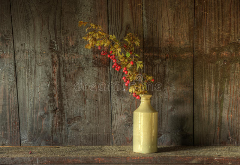 Retro style still life of dried flowers in vase royalty free stock photo