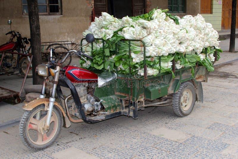 Retro trasporto del cinese Paksoi, Daxu, Cina fotografia stock libera da diritti