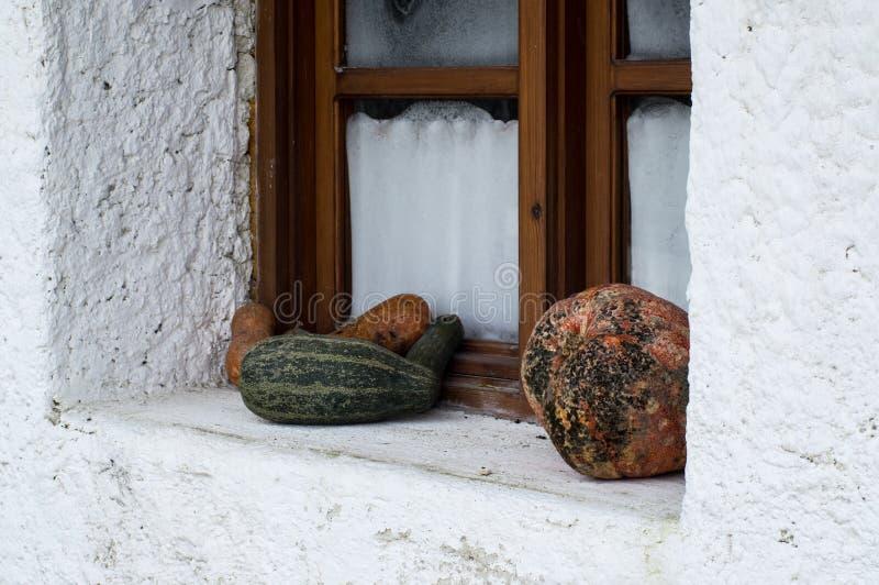 Retro utformad dekor med zucchinin nära fönstret fotografering för bildbyråer